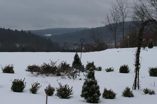 Herb Garden in Winter2