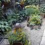 Garden_early_2007_042
