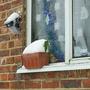 Small trough on windowsill