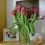 Decided to get these red tulips to cheer me up last Tuesday...