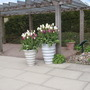 Harlow carr 2010