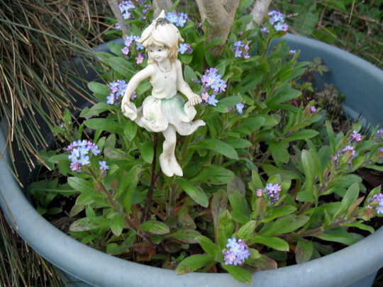 Fairy and forget me nots....