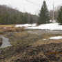 the new pond site...possibly!