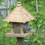 Blue Jay at the new feeder