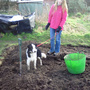 help arrives at allotment