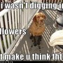 Another funny little pic xx
