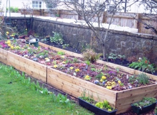 My new raised beds.