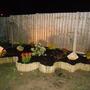 In the night garden!!