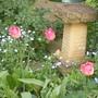Garden_evening_april_2011_004