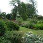 Front_garden_2