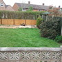 new pics garden 010