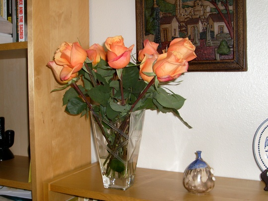 Orange roses tinged with pink - in celebration of my getting tenure!