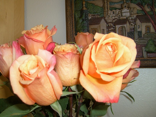 A close-up of the roses.