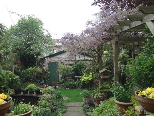 In-law's garden april 2011