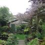Robs_garden_april_2011