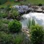 Pond this evening