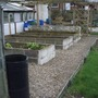 raised beds in allotment