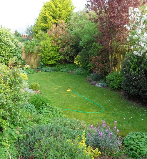 The Bottom garden 18.04.11