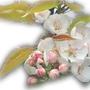spring brings flowers  (Pyrus pyrifolia  (Nashpati ))
