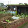 """""""Renew"""" show garden, Gardening Scotland 2008"""