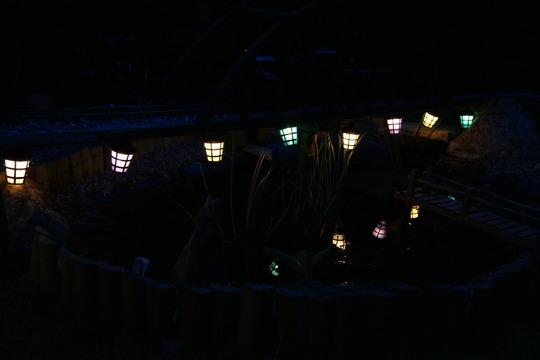 Pond lighting