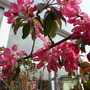 22nd_april_2011_036
