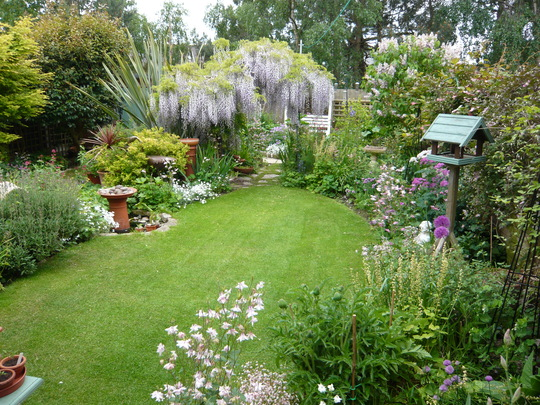 our garden last spring