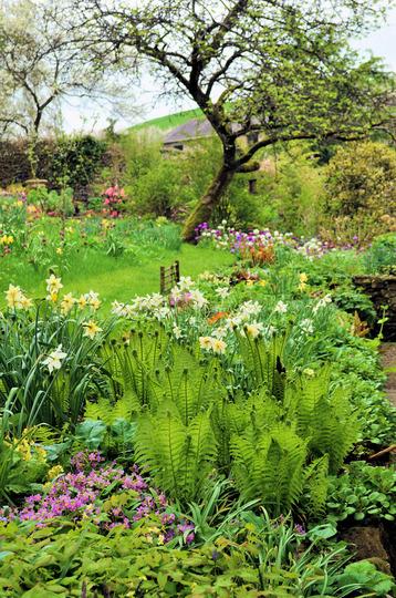 The garden of Summerhayes nursery