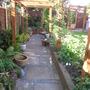 may 1st 2011 garden 010