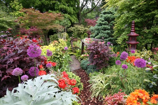 Lower garden 1 June