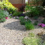 The front garden 01.05.11