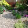 The front garden 01.05.11
