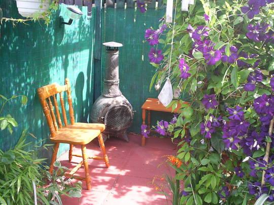 my shady corner in the garden