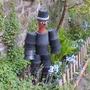 Garden_april_2011_005