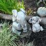 Garden_in_may_005