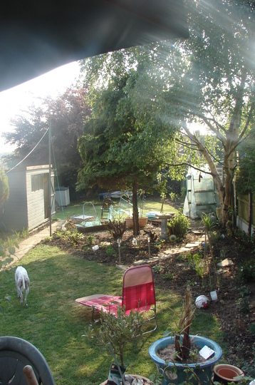 Lovely picture of the garden, shame about the sunlounger, the football and the dog's bottom!