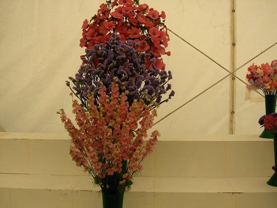 At Shrerwsbury flower show 2007