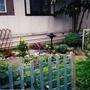 My_humble_garden_2