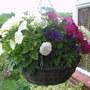 Front Door Hanging Basket