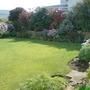 garden 008