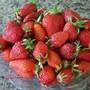 Strawberries....pass the cream please!