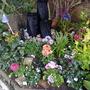 My Mums memorial Garden last summer 2010