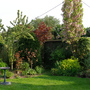 My garden in May 2011