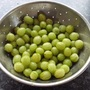 Gooseberries from our new allotment