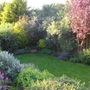 The Bottom garden 31.05.11
