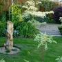 The garden in the evening sunlight