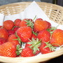 Strawberries_002