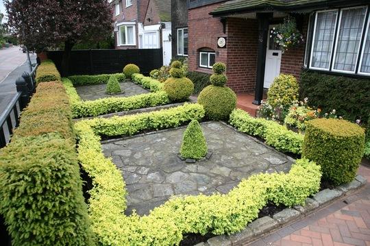 Front garden June 08