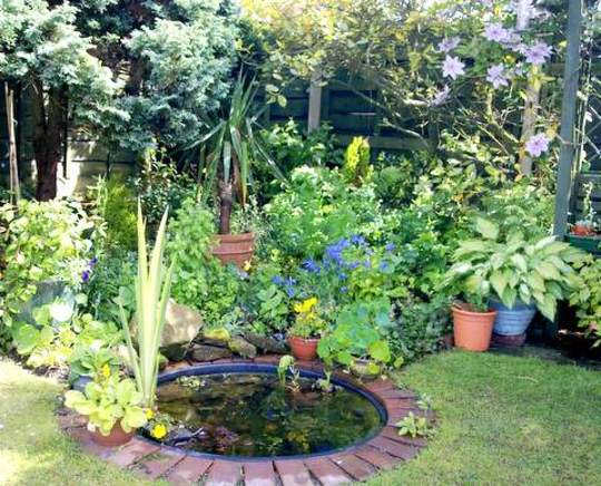 012 Our Little Pond Area