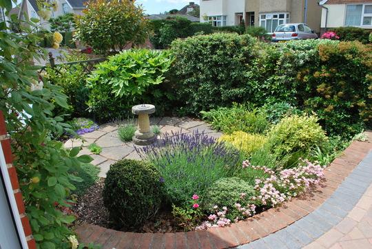 Front Garden for Annella...